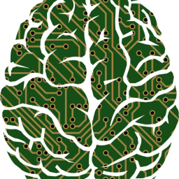 brain with circuit imagery